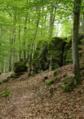 Herbstein Felsenruhe Basalt b.png
