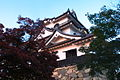 Hikone castle in sunset 夕映えの彦根城 (2115485364).jpg