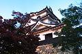 Hikone castle in sunset 夕映えの彦根城 (2115485364).jpg