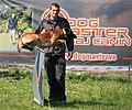 HiperParada animalelor la CORA (4549143072).jpg
