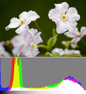 Exposing to the right - Image: Histogram ETTR