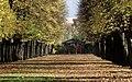 Hofgarten Ansbach - Flickr - Stiller Beobachter.jpg