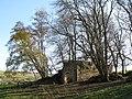 Holmslinn Lead Mine (6) - geograph.org.uk - 1586067.jpg