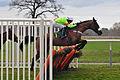 Horse racing (3310052130).jpg