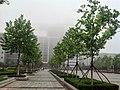 Huangdao, Qingdao, Shandong, China - panoramio (1203).jpg
