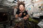 ISS-61 Jessica Meir dines on fresh Mizuna mustard greens inside the Unity module.jpg