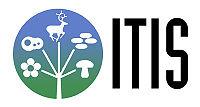 Логотип Объединённой таксономической информационной службы
