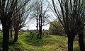I WW, Military cemetery No. 212 Bobrowniki Male, Poland.jpg