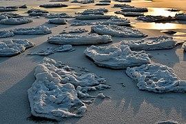 Ice off the coast at sunset.jpg