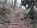 Ida-yama forest , Kawasaki - panoramio - Kaz Ish (1).jpg