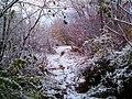 Il a neigé sur le sentier - panoramio.jpg
