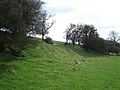 Ilbury Camp - panoramio - ian freeman.jpg