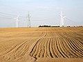 Inowrocław plain Piechcin2.jpg