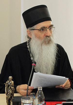 Irinej Bulović - Bishop Irinej in 2013
