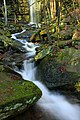 Jacoby Falls Trail (11) (15994151002).jpg