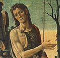 Jacopo del Sellaio - St John the Baptist (detail) - WGA11911.jpg