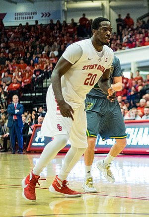 Jameel Warney - Warney playing for Stony Brook in 2016