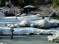 Japanese Garden (15423542314).jpg