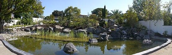 Jard n bot nico de marsella wikipedia la enciclopedia libre for Jardin japonais marseille