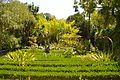 Jardin botanique (9305429048).jpg