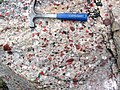 Jasper-quartz pebble conglomerate (Lorrain Formation, Paleoproterozoic, ~2.3 Ga; Ottertail Lake Northeast roadcut, near Bruce Mines, Ontario, Canada) 7 (46793176455).jpg