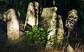 Jewish cemetery Otwock Karczew Anielin MGP6769.jpg