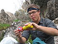 Jim eating salami and mustard (3092292328).jpg