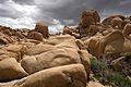 Joshua Tree National Park (3432978007).jpg