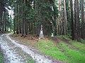 Kříž v lese západně od Kadova (Q80462146).jpg