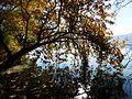 KASTORIA- lake (8).jpg