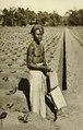 KITLV - 78316 - Kleingrothe, C.J. - Medan - Javanese coolie on a tobacco plantation of the Amsterdam Deli Company in Medan, Sumatra - circa 1900.tif