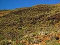 Karas Region, Namibia - panoramio (16).jpg