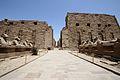 Karnak temple complex 12.jpg