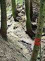 Kavinský potok (1).jpg