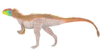 <i>Kayentavenator</i> species of dinosaur
