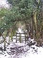 Kissing Gates on a path through Podkin Wood - geograph.org.uk - 1639172.jpg