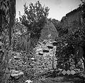 Kopa pred hišo od Zerbota, Tinjan 1949.jpg
