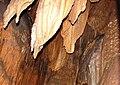 Korea-Danyang-Gosu Cave 3189-07.JPG