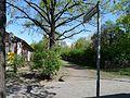 Kuppenheimer Straße Berlin-Wilmersdorf.jpg