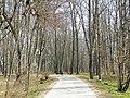 Kurmenes parks (2) - panoramio (1).jpg