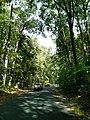 LHHV Field Trip to Gettysburg september 2016 - panoramio - Ron Shawley (40).jpg