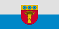 LVA Rūjiena flag.png