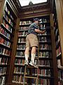 Lafayette College Easton PA 28 reading book up high.jpg