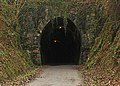 Landcross tunnel.jpg