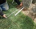 Landscaping at work (2).jpg