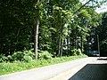 Landschaftsschutzgebiet Waldgebiet bei Neuenkirchen Melle, von der Straße aus - Datei 1.jpg