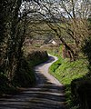 Lane at Amberley - geograph.org.uk - 749220.jpg