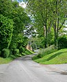 Lane through Chilcomb - geograph.org.uk - 436334.jpg