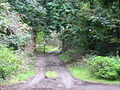 Lane used by the footpath beyond Presaddfed hall - geograph.org.uk - 987220.jpg