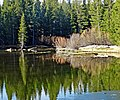 Last Ice, Tulumne Meadows, Yosemite 5-20-15 (18814564901).jpg